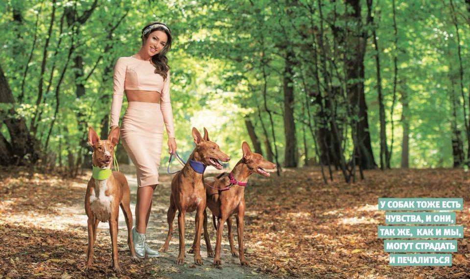 Злата Огневич устроила фотосессию с тремя огромными собаками в киевском парке (фото)