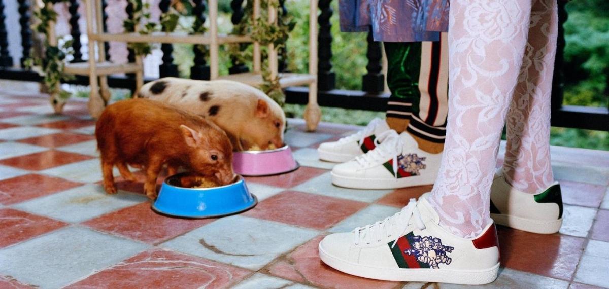 «Три поросенка» в самом милом кампейне Gucci