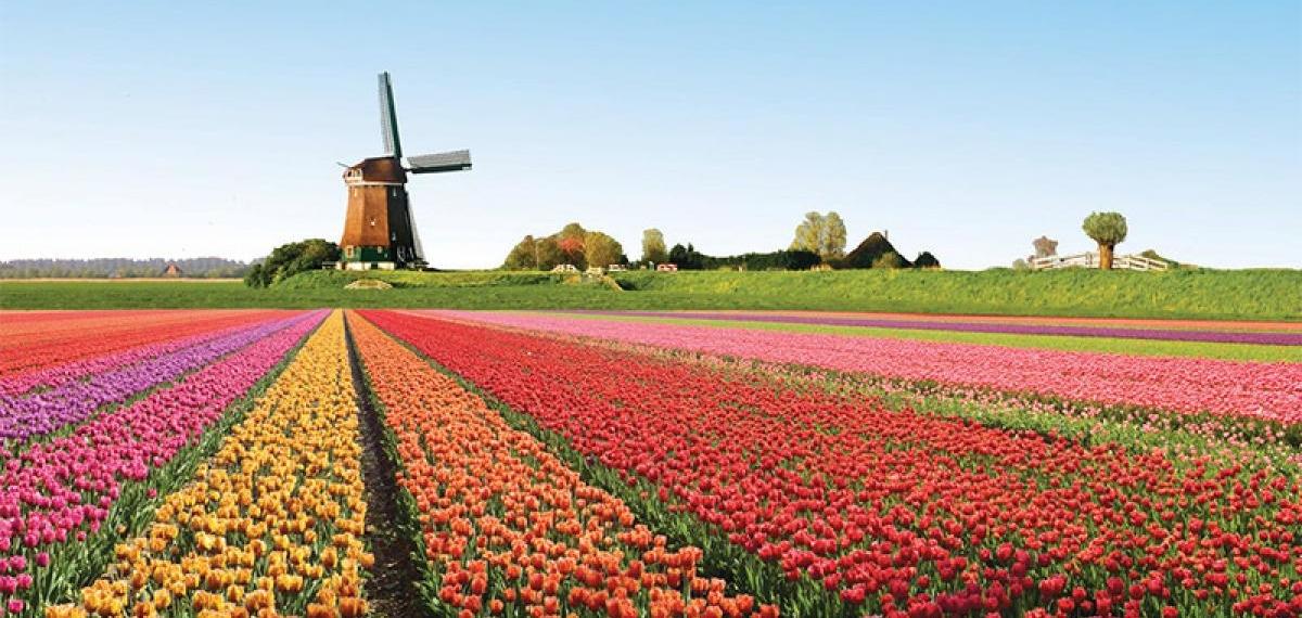 Важные новости: Страны «Голландия» больше не существует